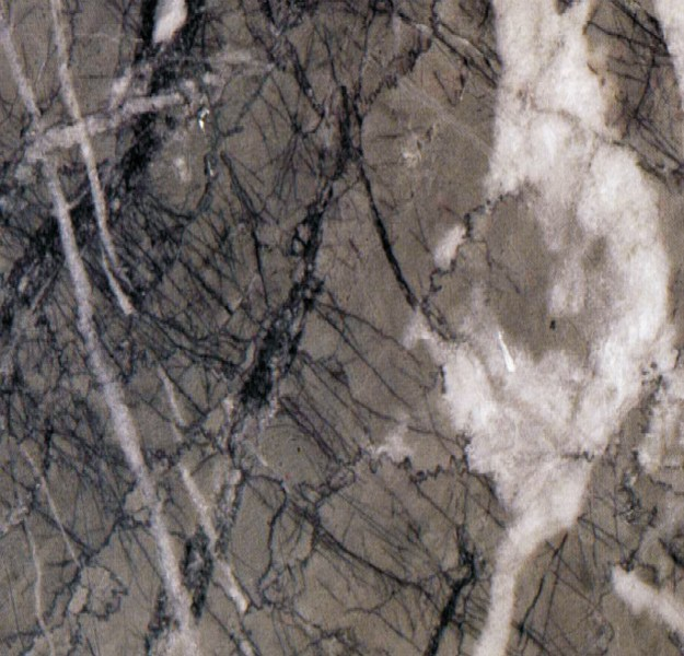 Grigio-carnico-marble