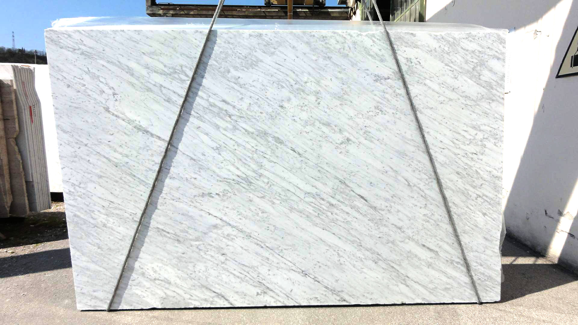 Carrara bianco C venatino